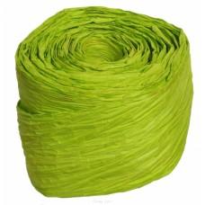 Papīra lenta, zaļa